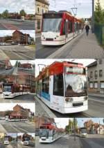 Erfurt-Nord/164571/rund-um-die-salinenstrasse-2010 Rund um die Salinenstrasse 2010
